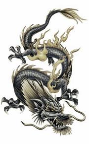 Sheik Dragon Form