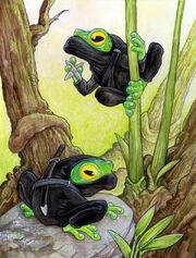 Ninja Frogs by ursulav