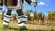 Wildebeest7