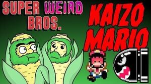 Kaizo Mario World | SuperBeardBrothers Wiki | FANDOM powered by Wikia