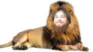 Alex the Lion PNG