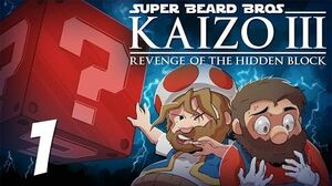 KAIZO MARIO 3 1 - Super Beard Bros