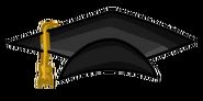 Gorra de la promocion 20