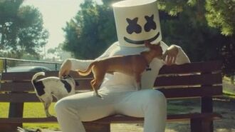 Marshmello - Ritual (feat. Wrabel) -Official Music Video-
