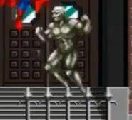 Metallic Humanoid