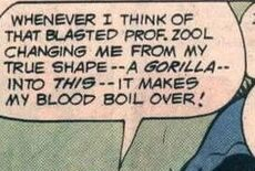 Professor Zool