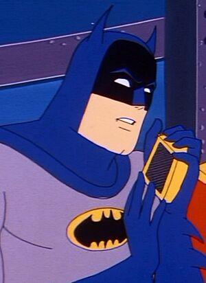 Bat communicator