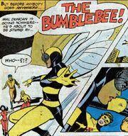 Bumblbee (TT 48) 5