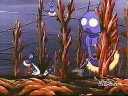 Robotfarmers