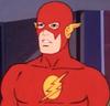 Portal-Flash
