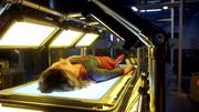 Кару облучают искусственным солнцем