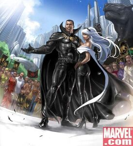 Black panther and storm in Wakanda