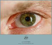 Eye 1 by LilyStox