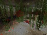 Grove of Ssshrooms