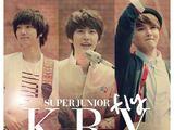 FLY (Super Junior-K.R.Y. song)