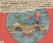 Super Mermaid Exhibit