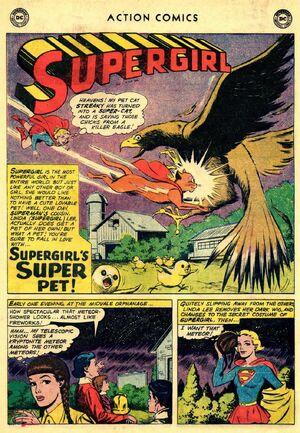 Supergirls Super Pet