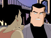 Bruce Wayne (Mystery of the Batwoman)