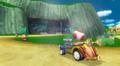Toad-S-Kart-Wii