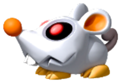 Scaredy Rat