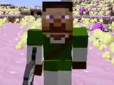 Link Steve