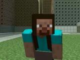 Female Steve