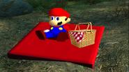 Mario's Big Chungus Hunt 003