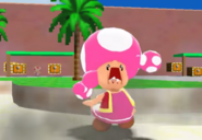 ToadetteWUTFace