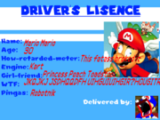 Mario s retarded driver lisence by koopermatt-d6r9xat