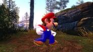 Mario's Big Chungus Hunt 091