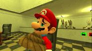 Mario's Big Chungus Hunt 162