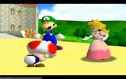 Toad, Luigi and Peach outside