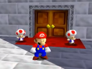 Toad guards1