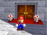 Toad Guards