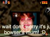 Bowser's Mom