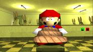 Mario's Big Chungus Hunt 207