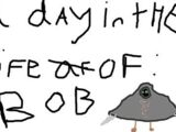 A Day in the life of Bob