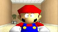 Mario's Big Chungus Hunt 287