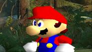Mario's Big Chungus Hunt 020