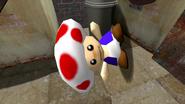 SMG4 The Mario Convention 005