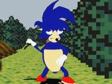 Bootleg Sonic