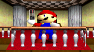 Mario The Ultimate Gamer 135