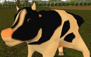 Normal Cow