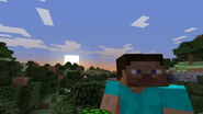 Minecraft overworld