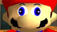 Mario's Big Chungus Hunt 219