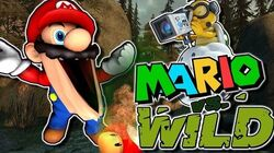 The Mario Channel Mario Vs Wild