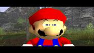 Mario's Big Chungus Hunt 115
