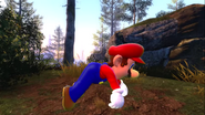 Mario's Big Chungus Hunt 093