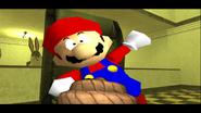 Mario's Big Chungus Hunt 169