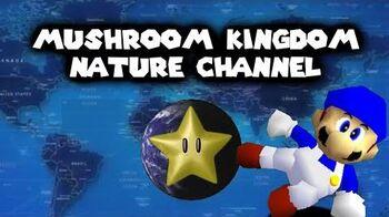 Mario 64 M. K